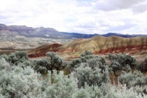 Wheeler County Painted Hills